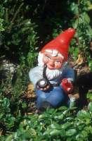 garden-gnome-pipe-9r-200
