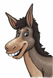 donkey_head250