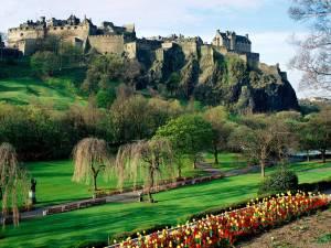 Edinburgh Castle and bonus tulips - Imgur