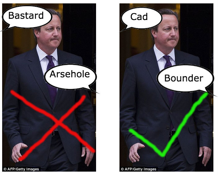 Cameron right and wrong