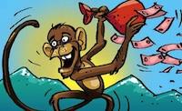 monkey200