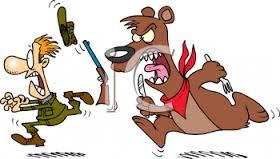 bear chasing hunter