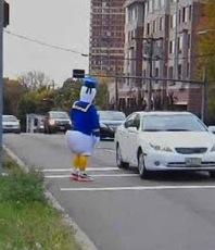 d duck 2