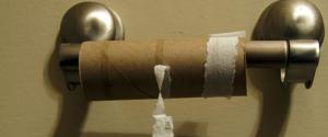 n-LOO-ROLL-BOG-ROLL-TOILET-PAPER-medium