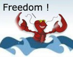 Freed lobster