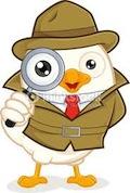 spy pigeon