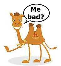 bad camel