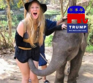 trunk-trumping