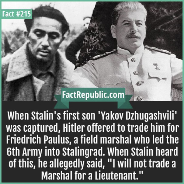 post16 no fathers day card for stalin