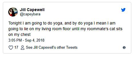 cat chest yoga